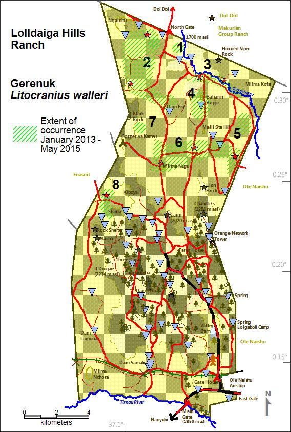 DeJong & Butynski - LHL - Gerenuk