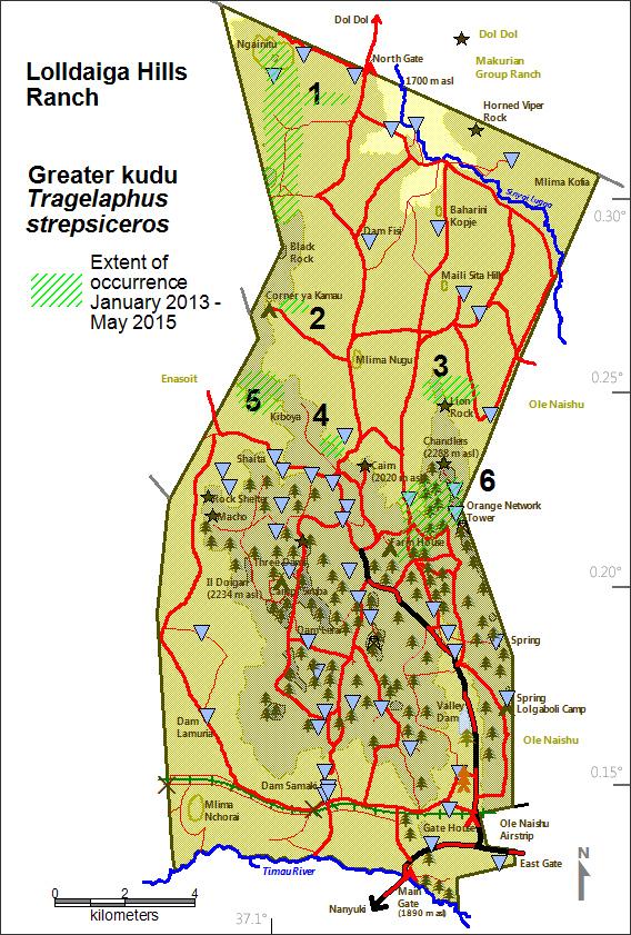 DeJong & Butynski - LHL - Greater kudu