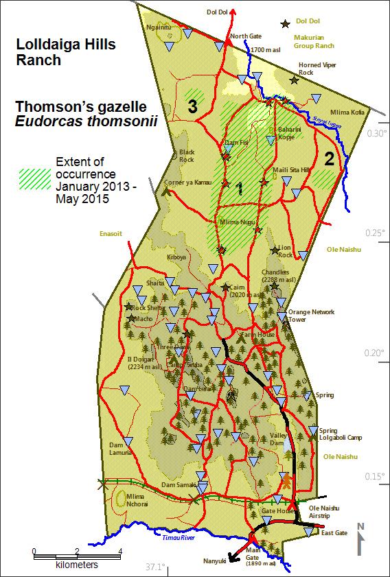 DeJong & Butynski - LHL - Thomson gazelle