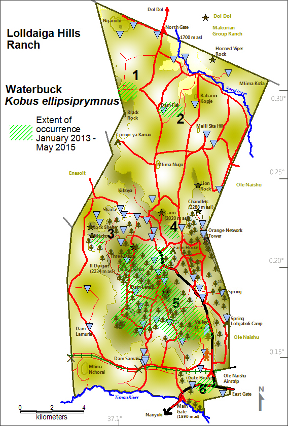 DeJong & Butynski - LHL - Waterbuck